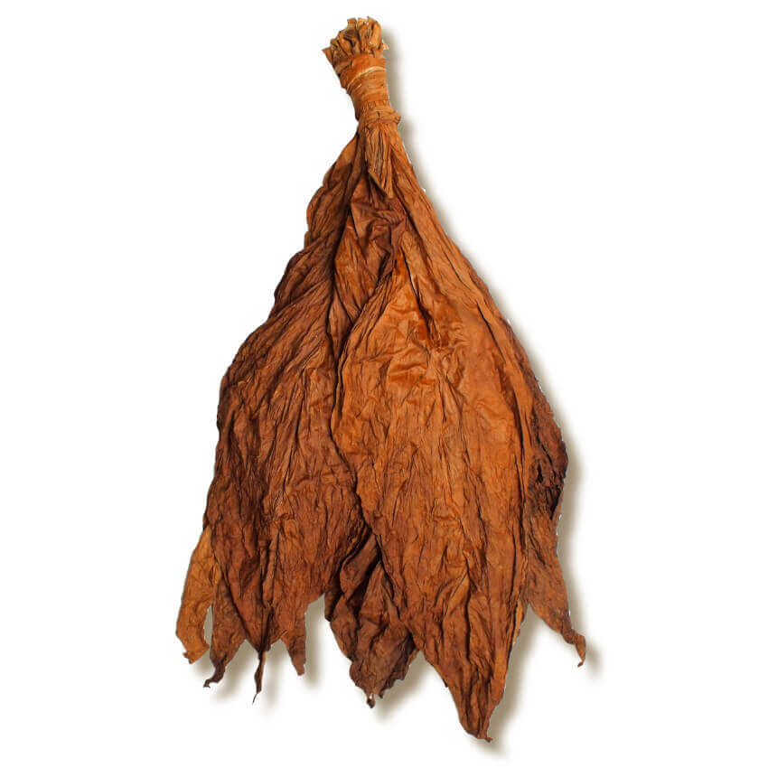 What is Fronto Leaf?