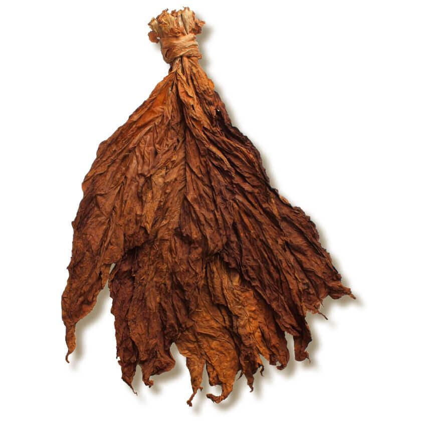 Αποτέλεσμα εικόνας για tobacco
