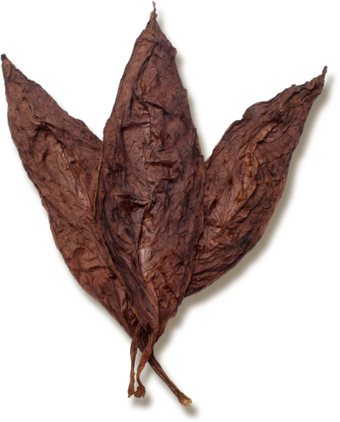 Virginia Light Fire Cured Wrapper Leaf Tobacco