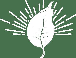 TLS Leaf White