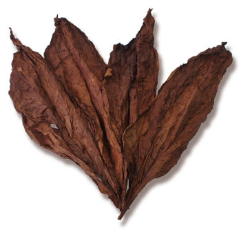 Kentucky Dark Fire Cured Leaf for Sale