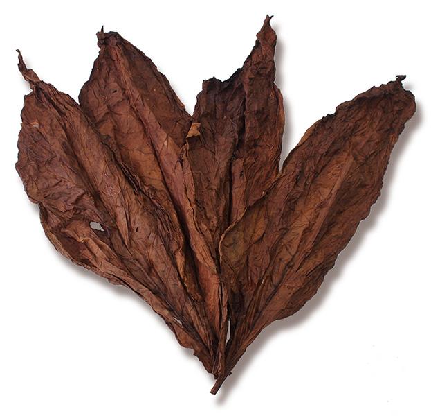 Kentucky Dark Fire Cured Leaf for Sale