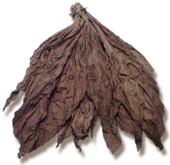 Whole Leaf Ecuadorian Seco Tobacco for Sale