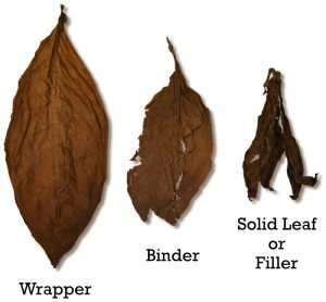 Grades of Tobacco Leaf